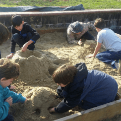 Sandbox Rehabilitation Project